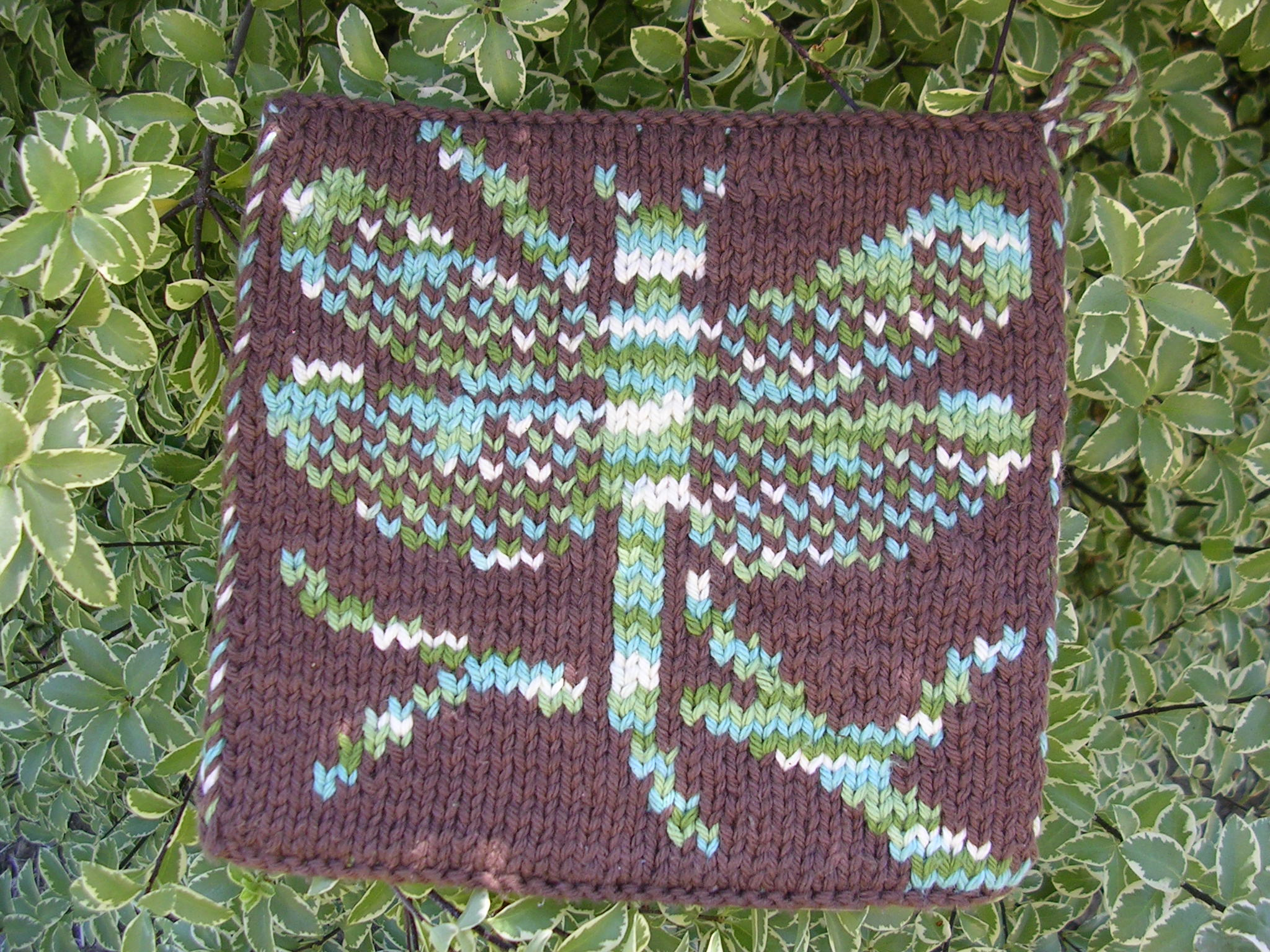 Dragonfly Pot Holder Pattern - store-sg-creations